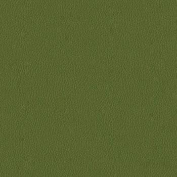 Burch Genesis Moss