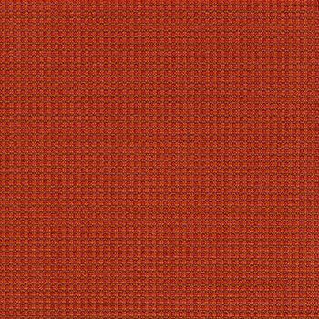 Momentum Grid Scarlet