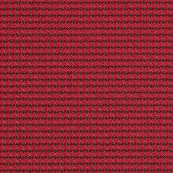 Momentum Expo Raspberry